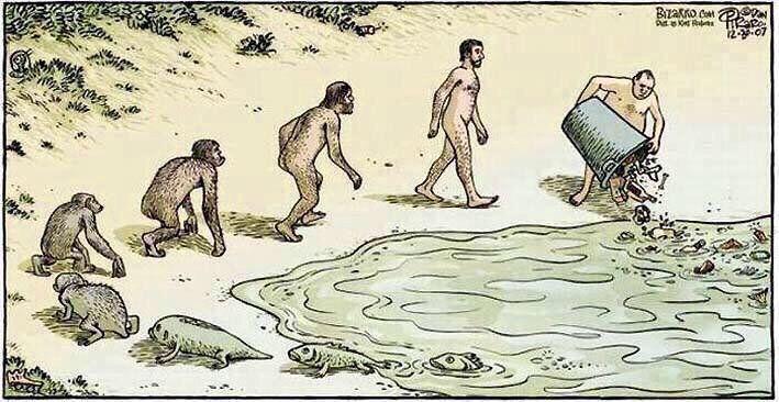 Смешные иллюстраций на тему эволюции