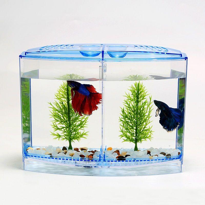 Betta Fish Aquarium Decor Image