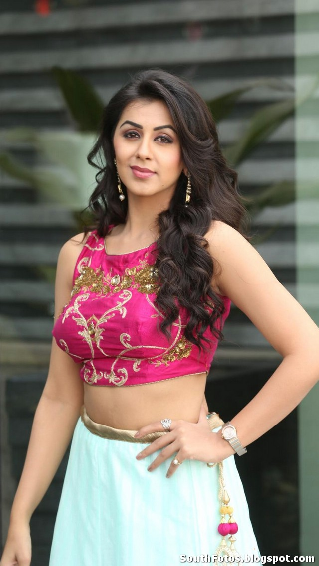 Nikki Galrani Photo Gallery