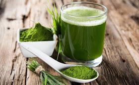 Зеленый коктейль Дюкана для похудения на водорослях