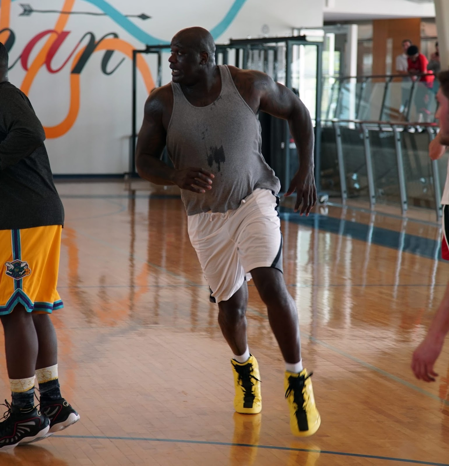 Shaq Attack Shoe Review