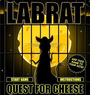 Chuột Labrat tìm phô mai