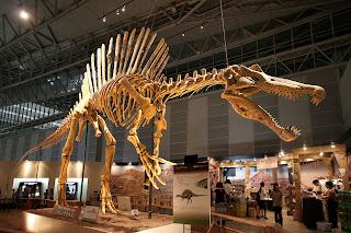 Esqueleto Spinosaurus