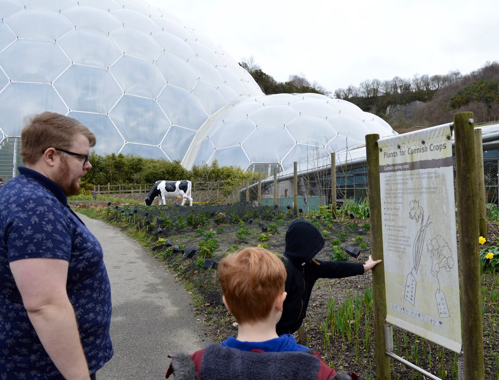 10 Reasons to Visit the Eden Project in Winter  - learning about Cornwall produce