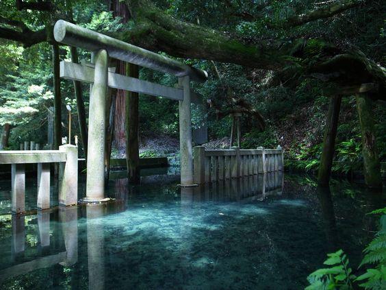 御手洗池(みたらしいけ) 池の中に鳥居が浮かぶ風景?茨城県のパワースポット鹿島神社【c】
