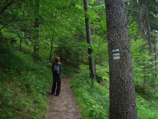 El sendero a Vlkolínec está bien señalizado