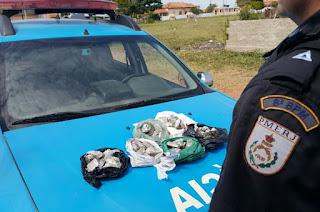 http://vnoticia.com.br/noticia/1871-pm-prende-dois-por-trafico-de-drogas-na-praia-do-sossego-ocorrencia-segue-em-andamento