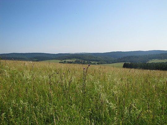 Panorama z Wahalowskiego Wierchu. Z lewej widać Kamień.