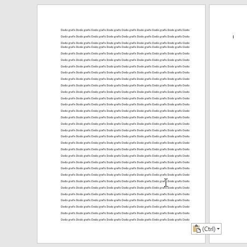cara mengatur margin pada pdf