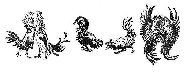 Marie Bracquemond cockfight sketches