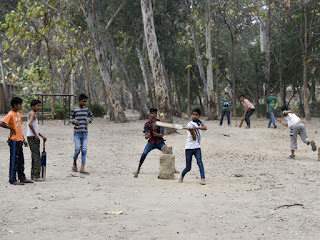 gully cricket in india