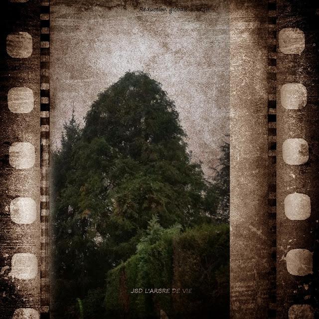 http://larbredeviejbd.blogspot.fr/p/blog-personnel.html