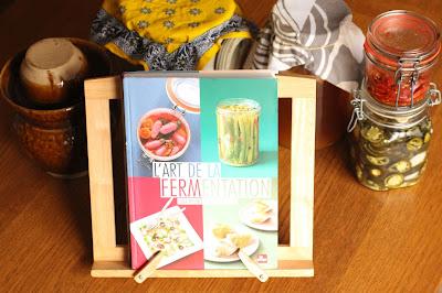 livre fermentation maison recettes