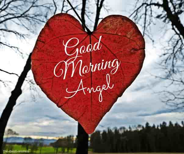 good morning angel darling images