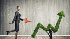 planten huren voor korte of lange termijn bedrijf kantoor event