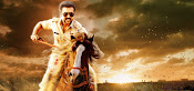singam 3 movie stills gallery-thumbnail-8