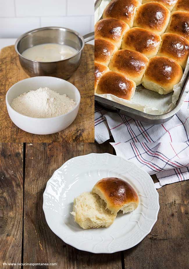 Panini lievitati americani chiamati dinner rolls
