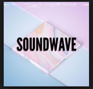 Kuci Gitar Soundwave - Satu