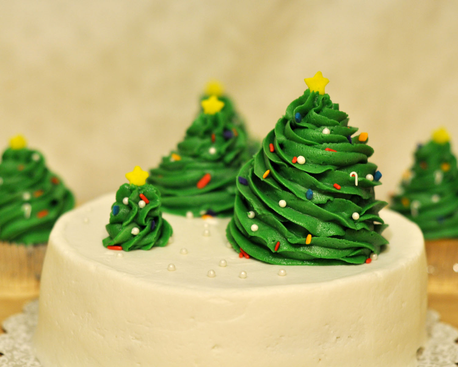 simple christmas cake i originally saw this idea