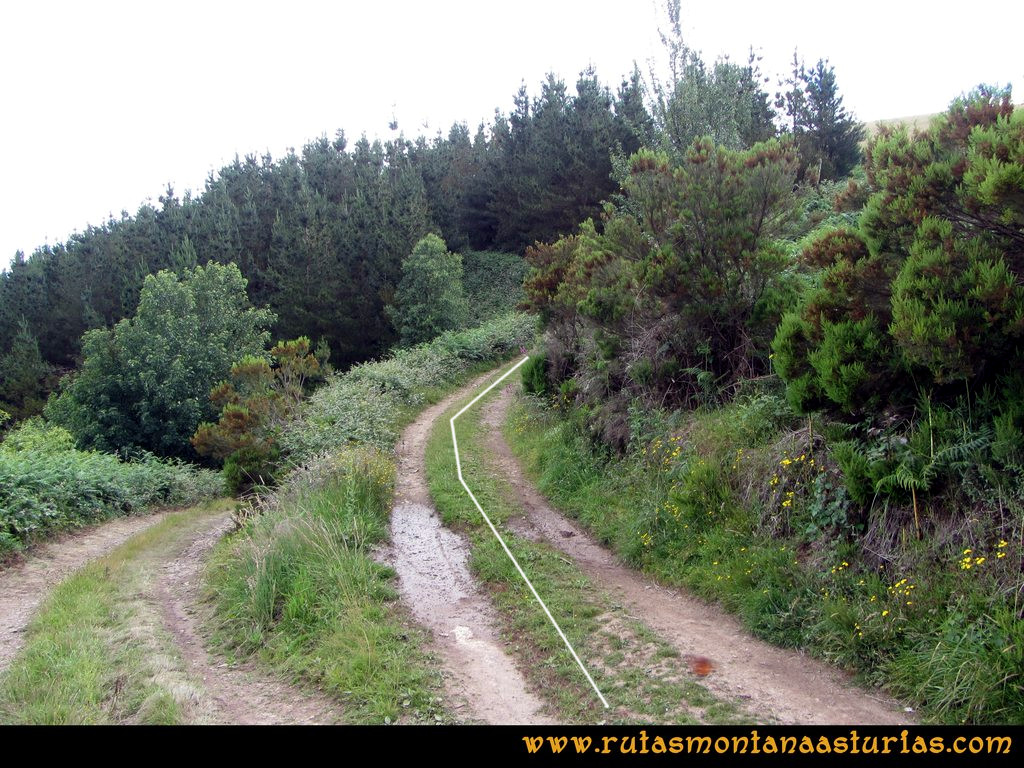 Ruta Cangas - Acebo: Camino a Villanueva de S. Cristobal, desvío a la derecha