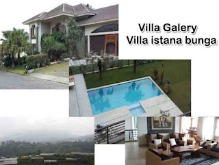 Villa Istana Bunga Di Lembang Fasilitas Kolam Renang