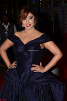 Payal Ghosh aka Harika in Dark Blue Deep Neck Sleeveless Gown at 64th Jio Filmfare Awards South 2017 ~  Exclusive 008.JPG