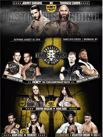 Poster Of WWE NXT TakeOver – Brooklyn 4 18th August 2018 HDTV 480P 300MB