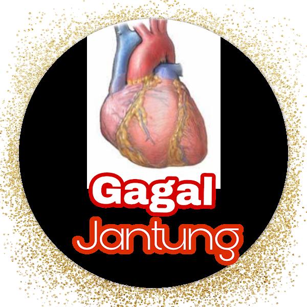 Mengenal Sedikit Penyakit Gagal Jantung