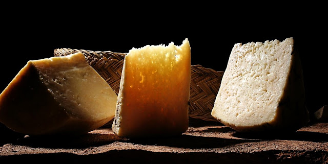 Quesos y fermentacion en biologia