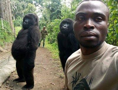SOKWE MTU WAPIGA 'SELFIE' DR CONGO