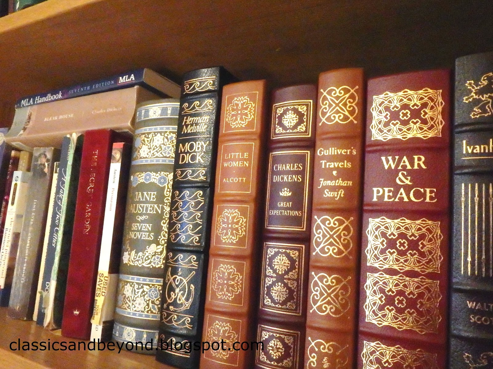 Classics and Beyond: My Bookshelves