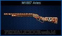 M1887 Aries