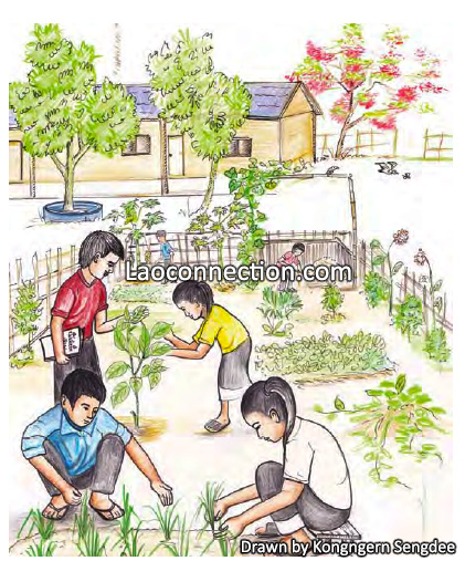 Lao students being taught how to garden at school - drawn by Kongngern Sengdee