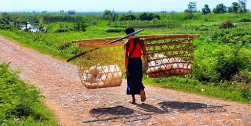 Peluang Perjuangan Sampingan Di Desa Yang Paling Gampang Dilakukan