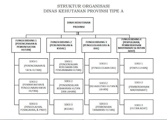 STRUKTUR ORGANISASI DINAS KEHUTANAN PROPINSI TYPE A