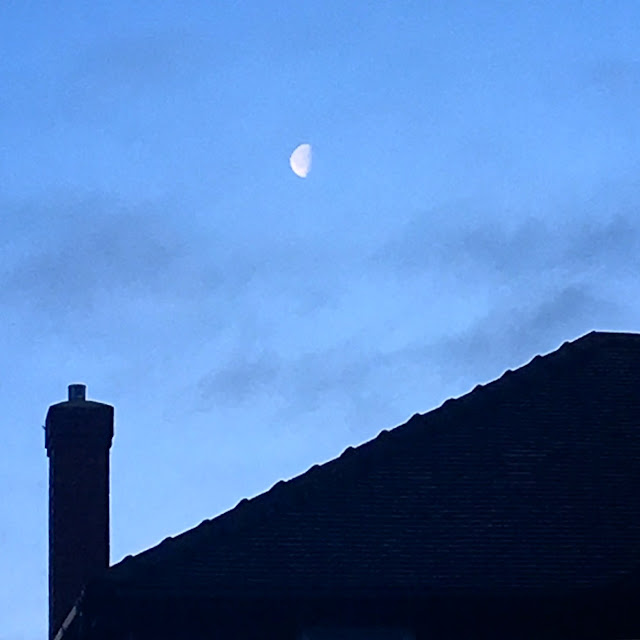 Half Moon Morning