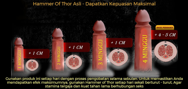 Hasil Hammer Of Thor Pills Asli