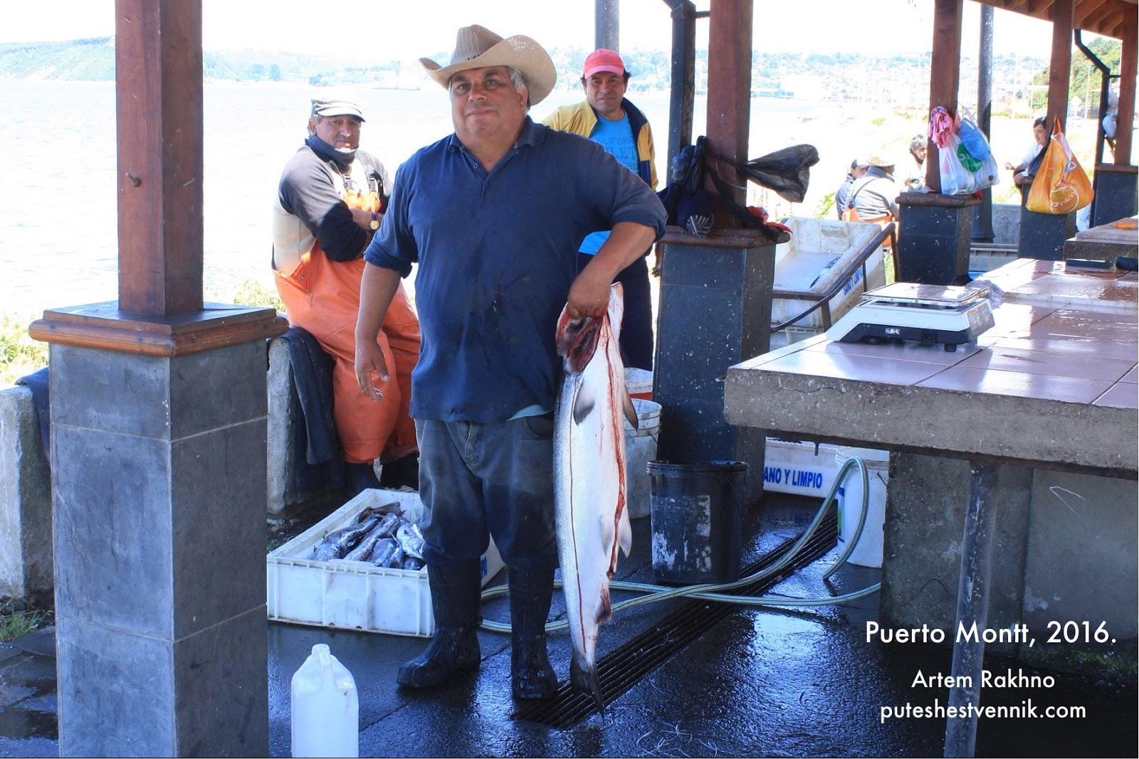 Чилиец держит рыбу