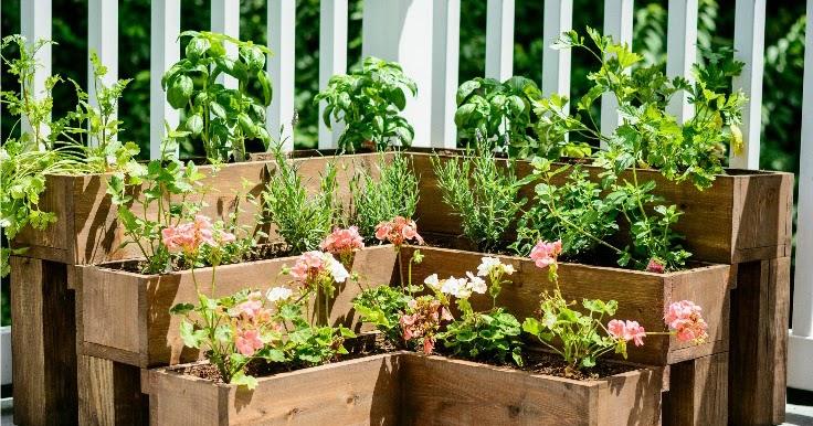 Very Small Garden Ideas - A Blog on Garden