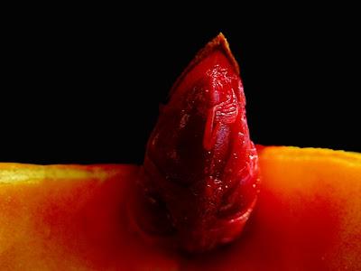 Aqui, uma semente do pêssego simbolizando o  clitóris