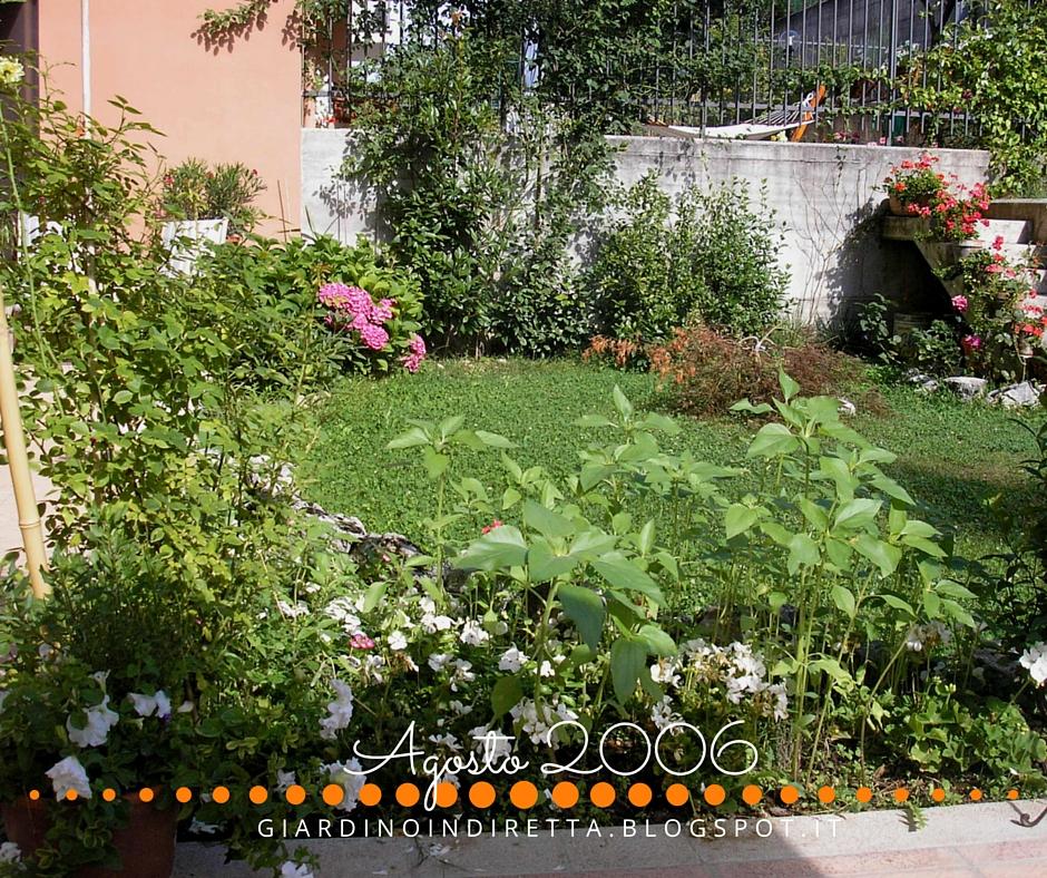 Elegant il giardino dieci anni fa come iniziare a for Sistemare un piccolo giardino
