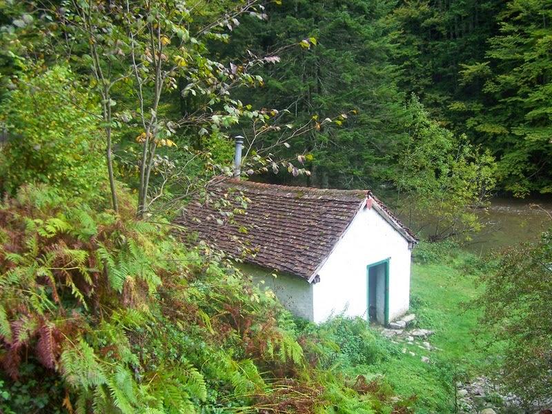 cabanas bosque de irati