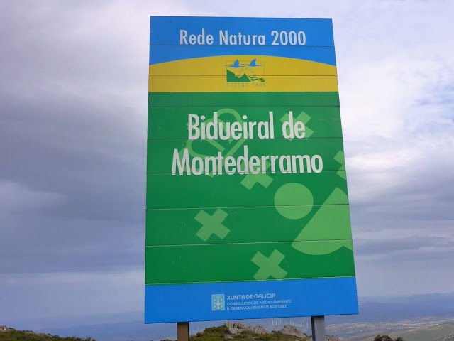 ANDAINA - ANDAINA POR EL BIDUEIRAL DE MONTEDERRAMO