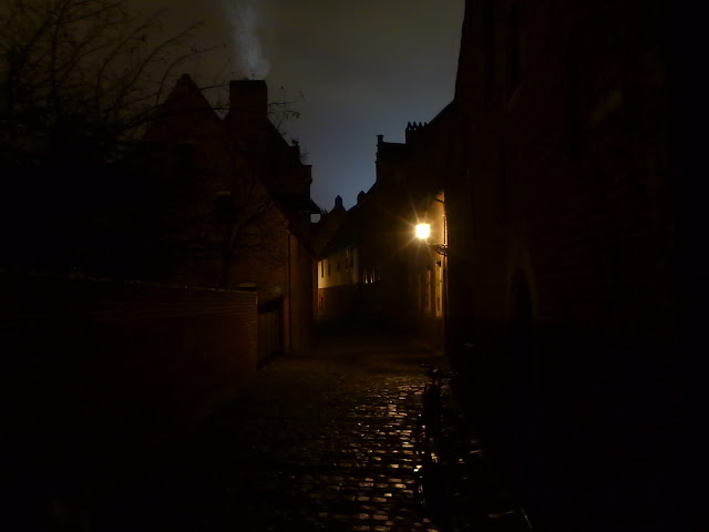 blog.oanasinga.com-winter-in-Europe-Leuven-Belgium-November-2012-(10)
