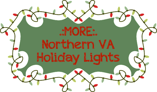 More Northern VA Holiday Lights - Claudia S. Nelson