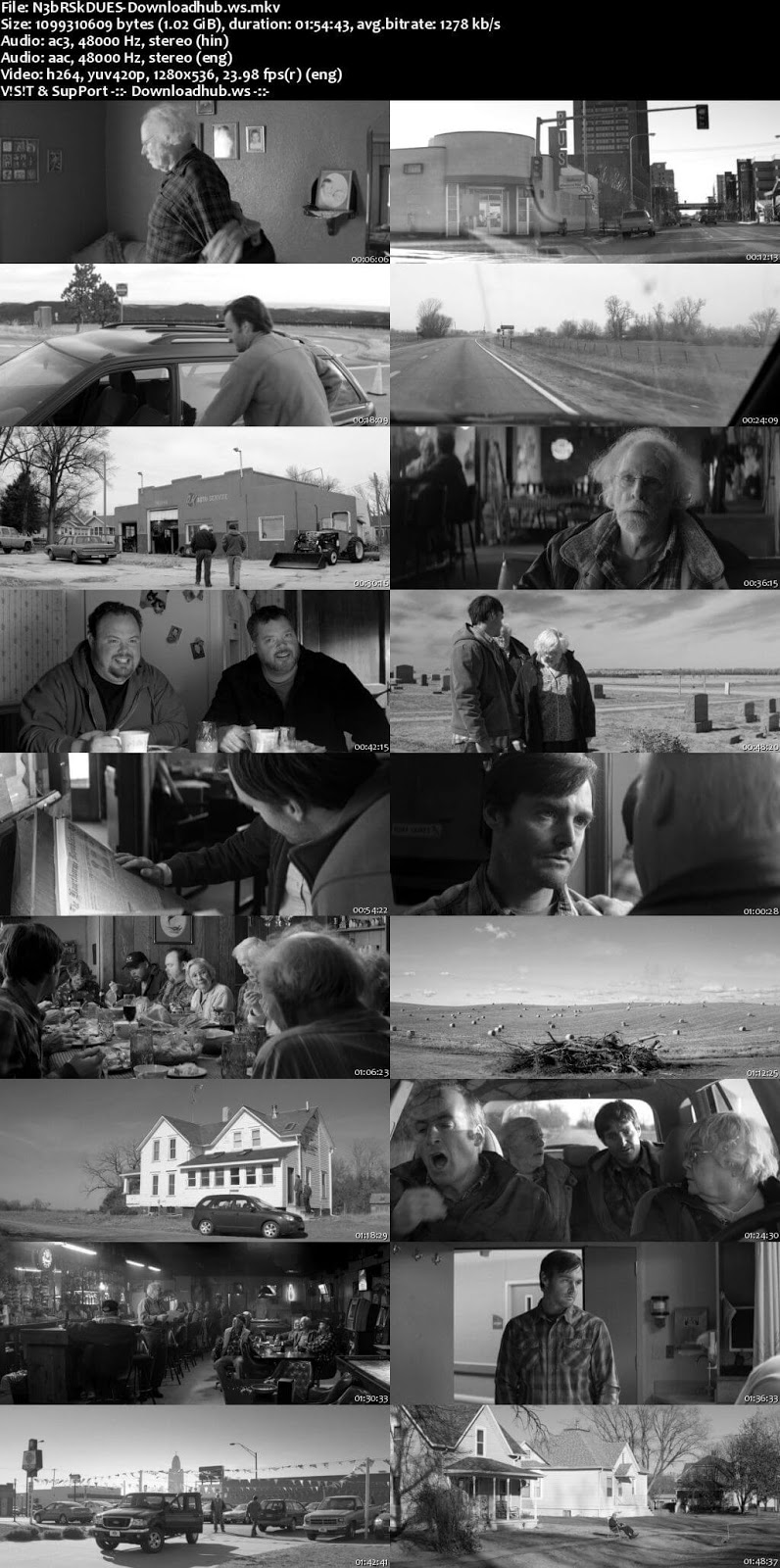 Nebraska 2013 Hindi Dual Audio 720p BluRay Free Download