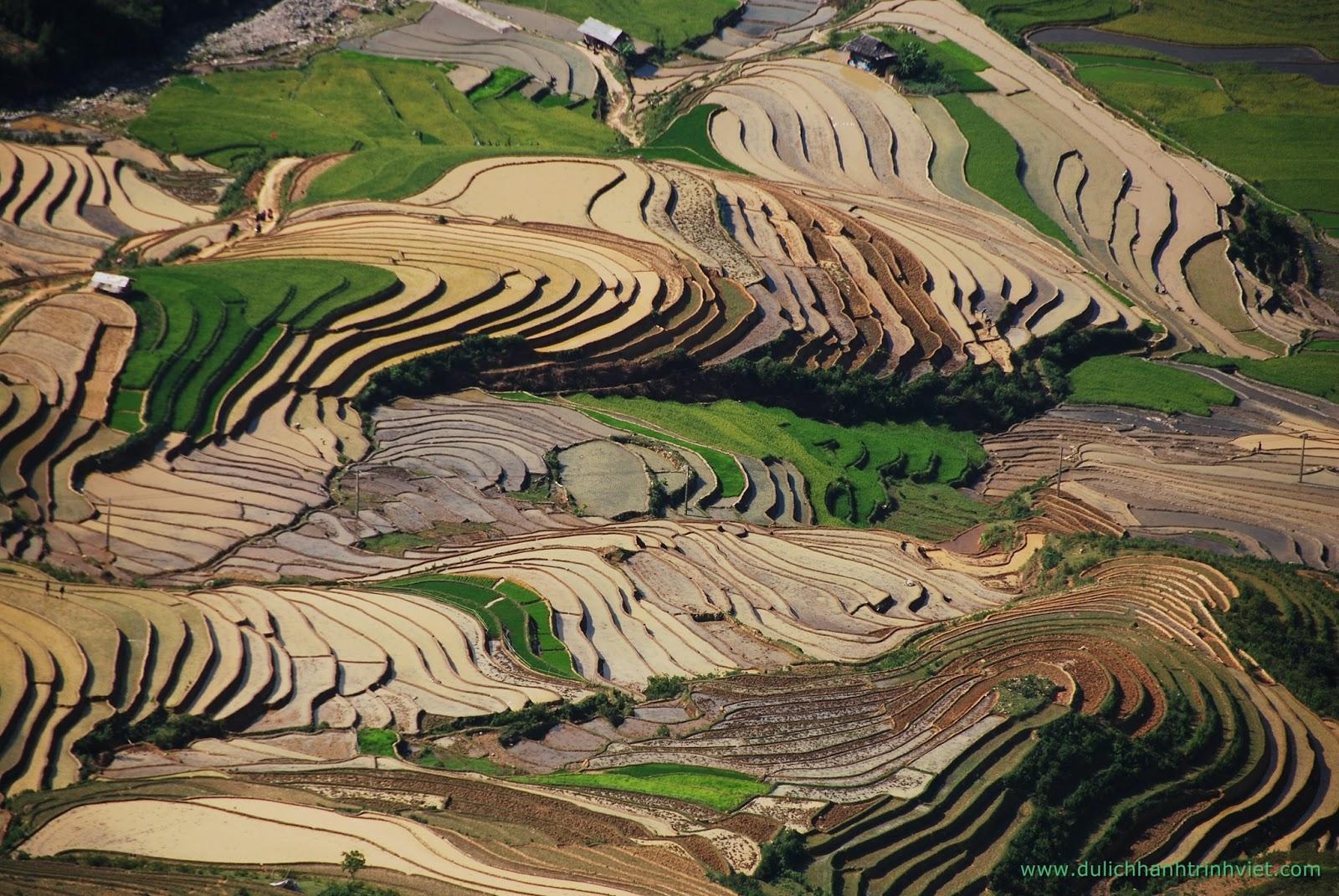 Quyến rũ Ruộng Bậc Thang - Photo Phương Bùi