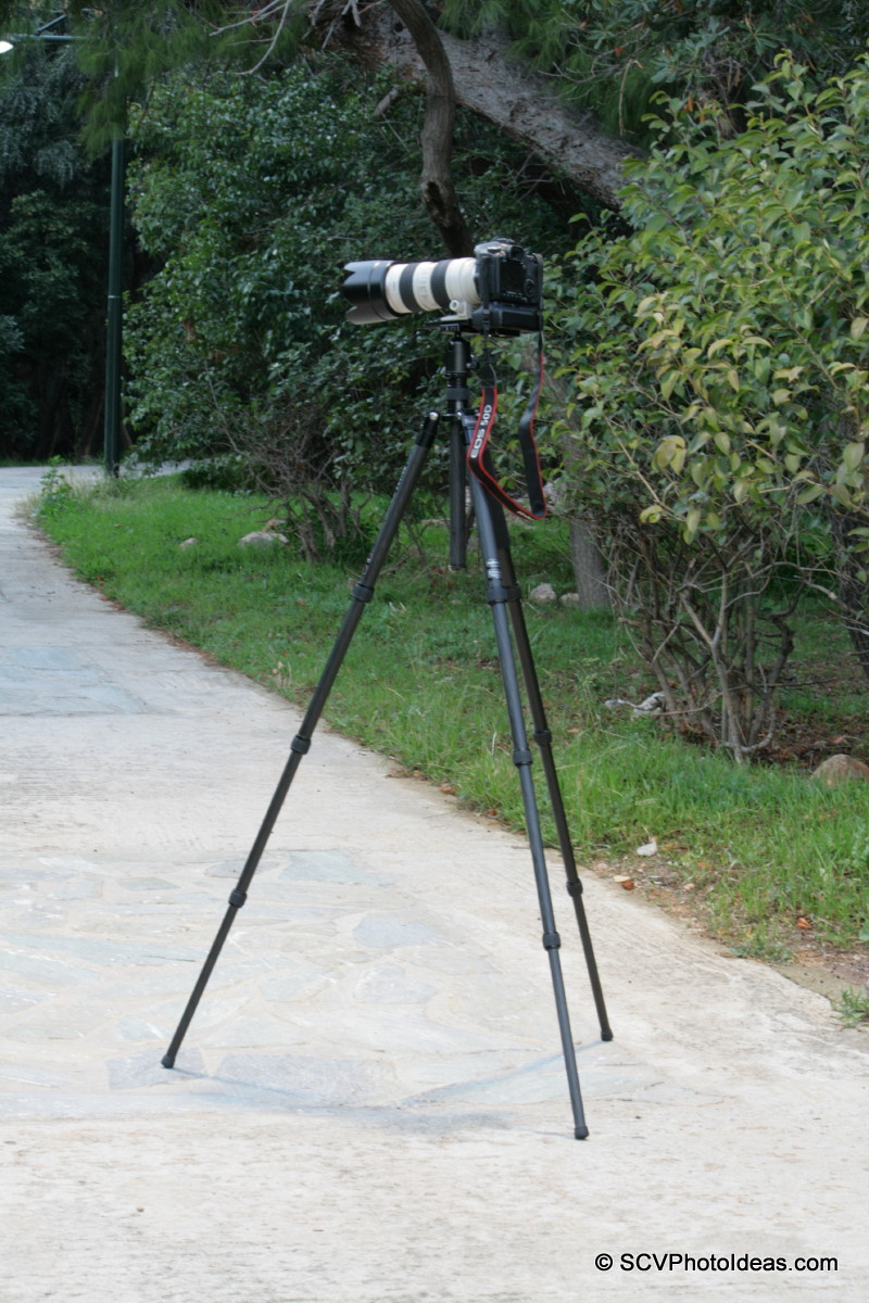 Triopo GT-3228X8C col down+ Sunwayfoto DB-36TRLR + Canon 50D + EF70-200L-IS-USM - park fullview