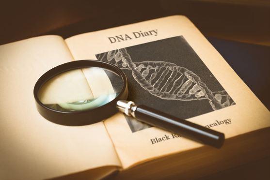 DNA Diary, Black Raven Genelaogy