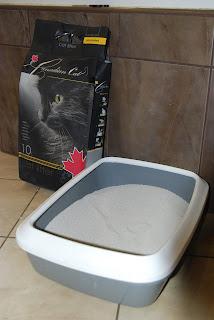 żwirek dla kota bantonitowy